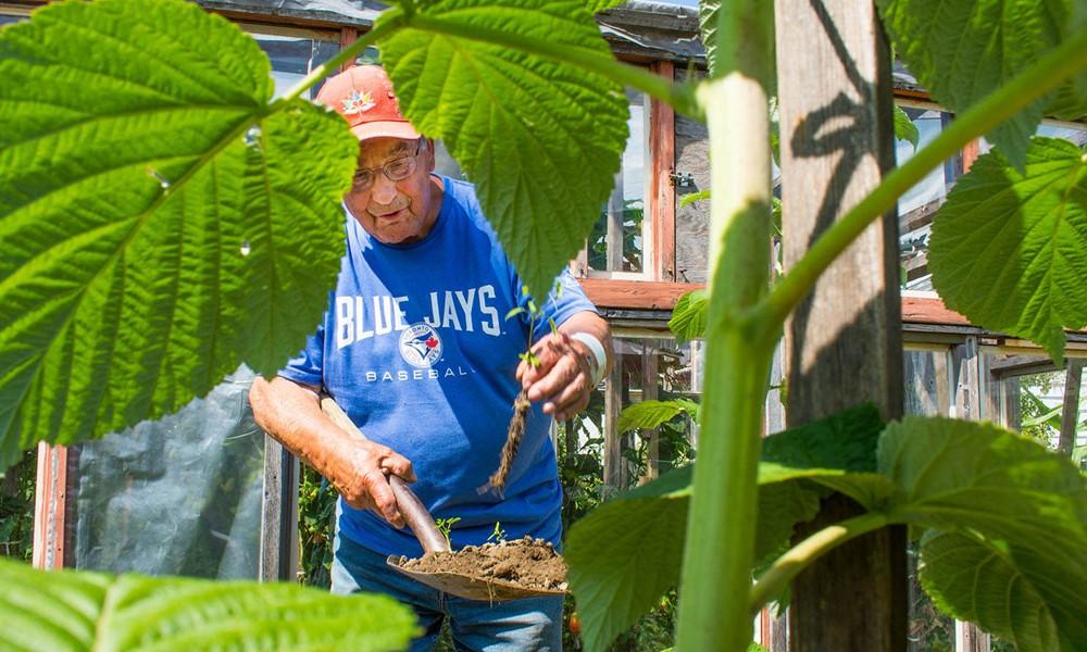 90 éves, de mindene a kertje, naponta 5 órát dolgozik benne
